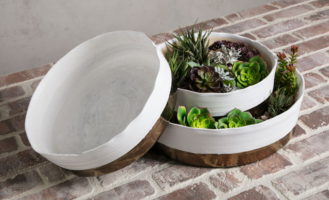 Above: A variety of succulents are at home in the Harlow Ceramic Planters (13668-3).